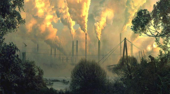 4 cambios que puedes hacer para combatir el cambio climático