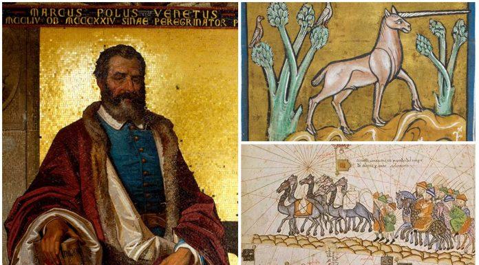 El Unicornio que vio Marco Polo. ¿Qué era?