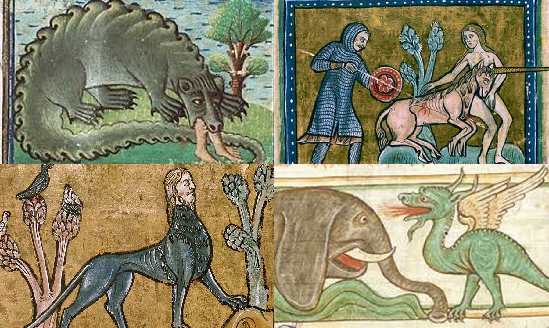 Ebook Bestiario Medieval as PDF Download Portable Document Format