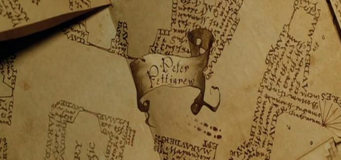 duda de harry potter pettigrew