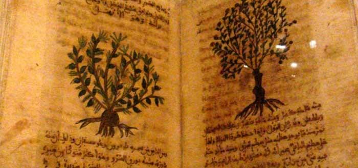 Medicinas Medievales