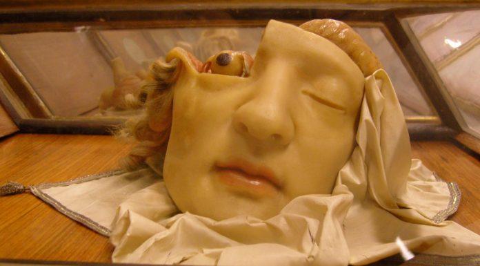 Anna Morandi la dama anatomista del siglo XVIII