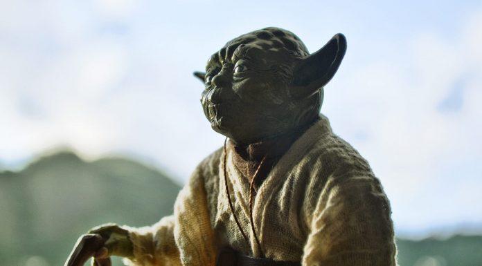 La nueva especie de murciélago que se parece a Yoda