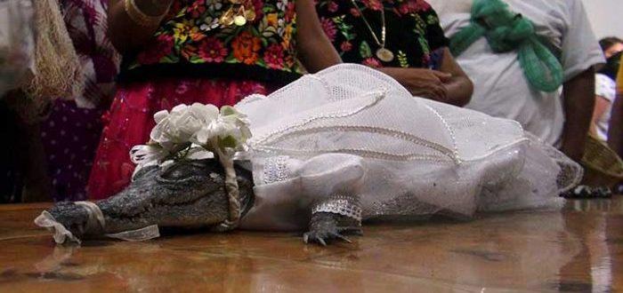 Un alcalde mexicano se casó con un cocodrilo y esta es la razón