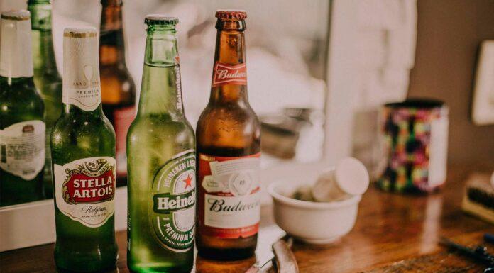 la cerveza es buena para los huesos