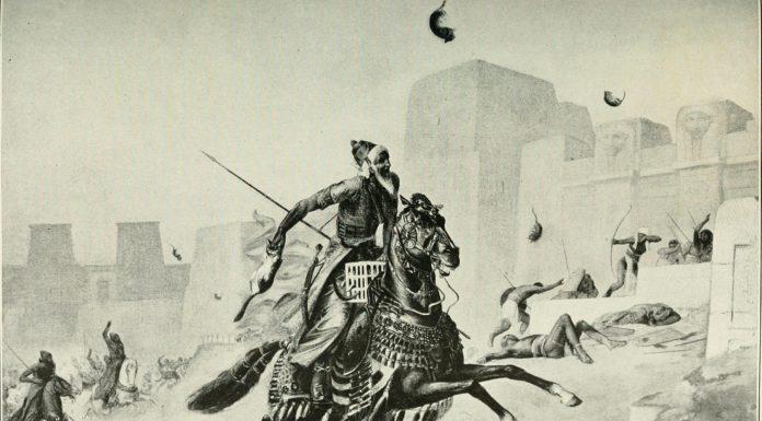 pelusium, la batalla que los persas ganaron gracias a gatos