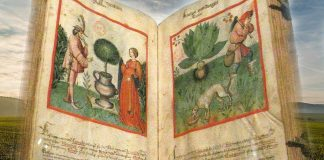 Tacuinum sanitatis, el increíble manual medieval de salud y bienestar