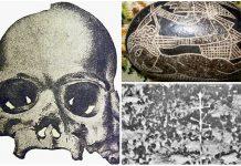 3 Alucinantes Ooparts que eran falsificaciones