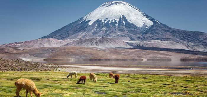 datos curisos de chile su numero de volcanes