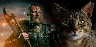 Gatos y vikingos. Juntos en sus conquistas