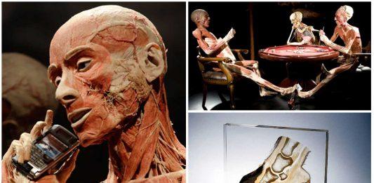 La Plastinación, el embalsamado moderno. ¿Ofrecerías tu cuerpo?
