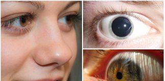 Tus pupilas te delatan. 7 cosas que puedes leer en ellas