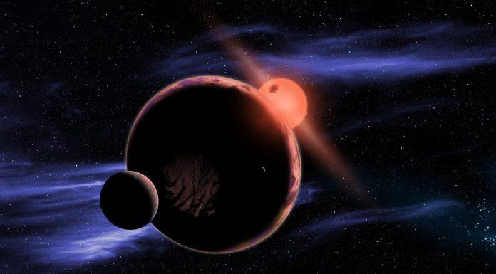 Encontraremos vida inteligente en el espacio en tan solo 20 años, según astrónomo