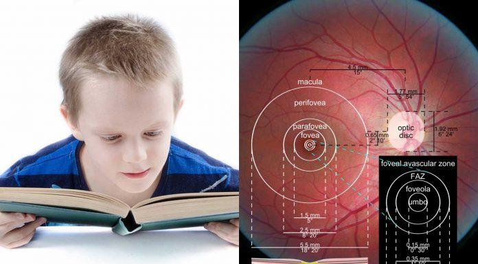 Una investigación asocia la dislexia con un problema fisiológico en el ojo