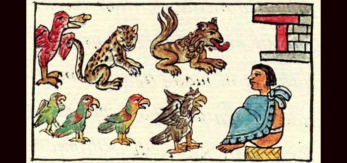El zoo de Moctezuma que incluía humanos