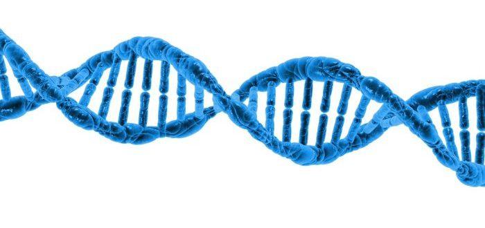 Biohackers lograron introducir un virus informático en una cadena de ADN