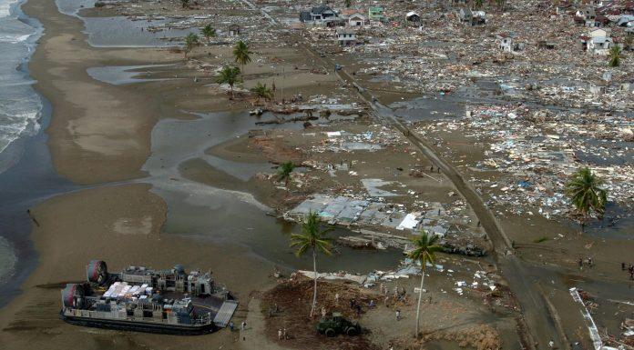 Características que comparten supervivientes de desastres