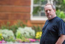 Sabes quién es Harvey Weinstein Datos que quizás no conocías