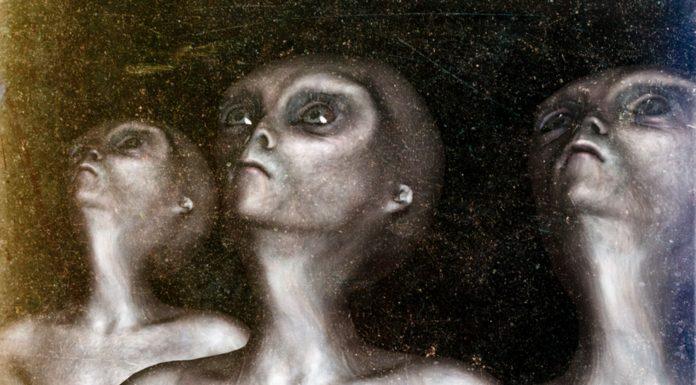 ¿Cuál sería el aspecto de los alienígenas La ciencia habla1