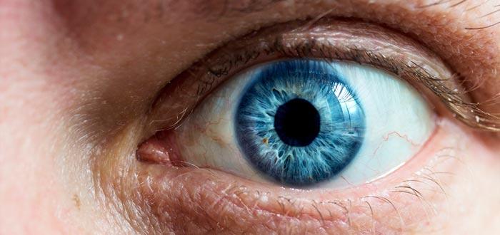 curiosidades del mundo, ojos azules, mismo ancestro