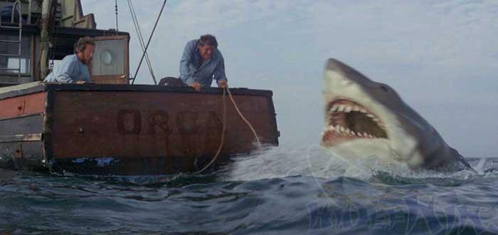 12 Películas de Tiburones que no puedes perderte, Película de Tiburón