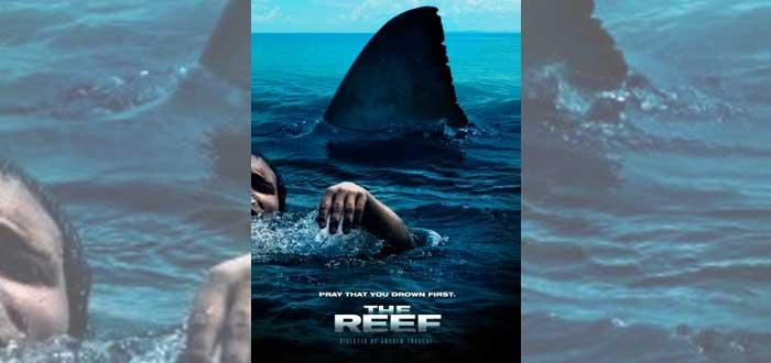 10 películas de tiburones que no puedes perderte - Supercurioso