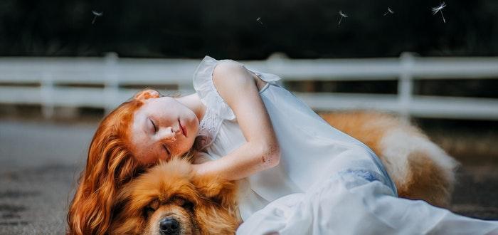 Estudio: ¿Tener un perro puede ayudarte a vivir más?