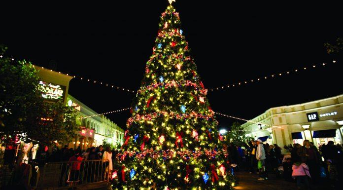La historia de San Bonifacio y el primer árbol de Navidad