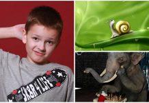 25 Adivinanzas de Animales con Respuesta. ¿Podrás resolverlas?