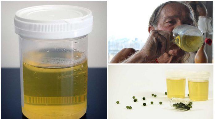 Orinoterapia o Terapia de la Orina, ¿qué sabes de ella?
