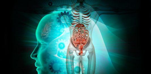 organos que no sirven