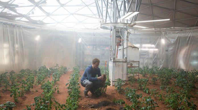La granja de la Antártida que podría viajar a Marte