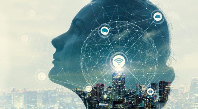 El cerebro humano que los científicos lograron conectar a Internet