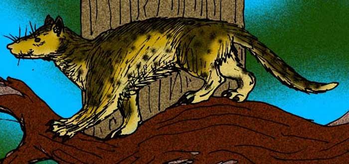 25 Curiosidades de los perros que te asombrarán, información sobre los perros