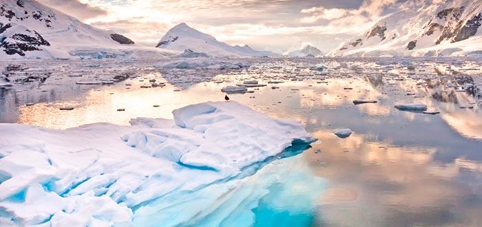 curiosidades de países, Antártida