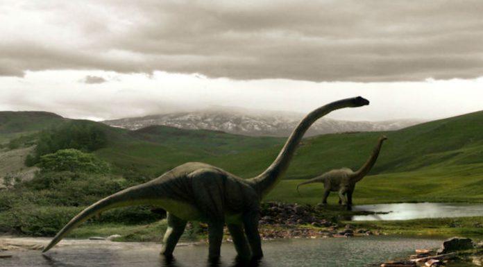 de qué color eran los dinosaurios