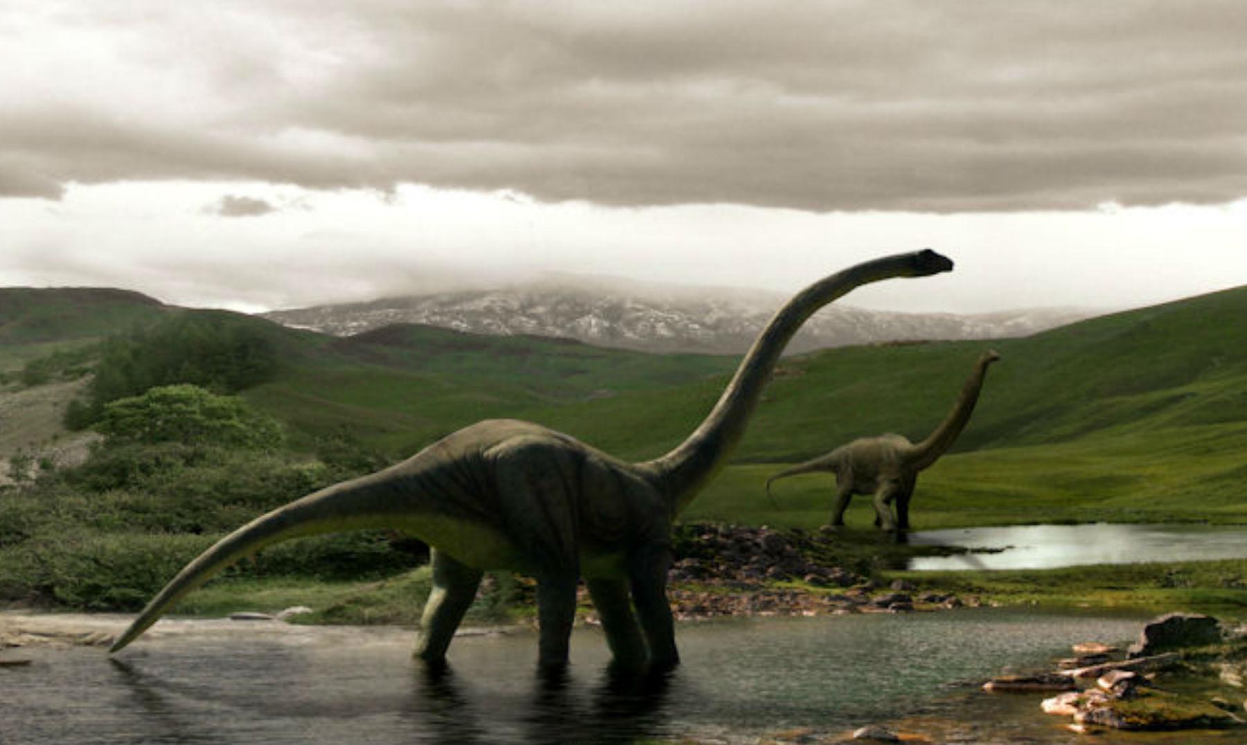De qué color eran los dinosaurios? ¿Se puede saber?