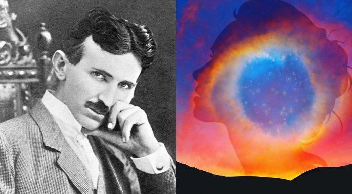 ¿Eres un Pensador Visual como Nikola Tesla?
