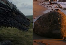 La Playa de los Huevos de Dragón y ¡no es Juego de Tronos!
