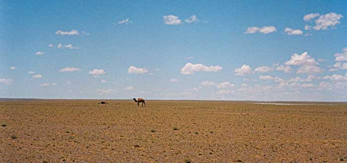 25 Curiosidades de Mongolia, el país de Genghis Khan, idioma de Mongolia, costumbres de Mongolia, comida de Mongolia
