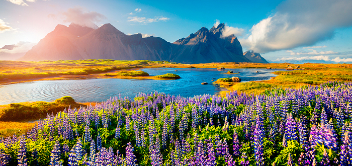 Curiosidades de Europa, Curiosidades de Islandia, paisaje islandés