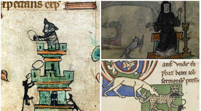 10 Alucinantes imágenes de gatos en manuscritos medievales