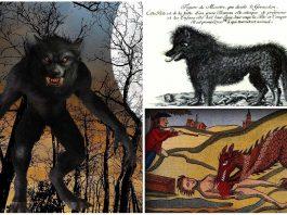 La Bestia de Gévaudan, un críptido devorador de hombres