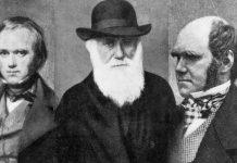 darwin ateo