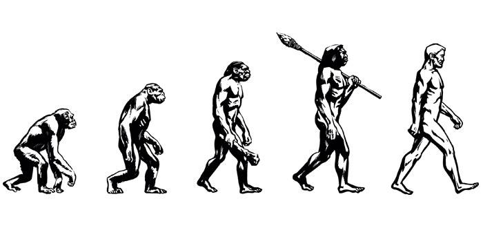 darwin ateo, evolución humana