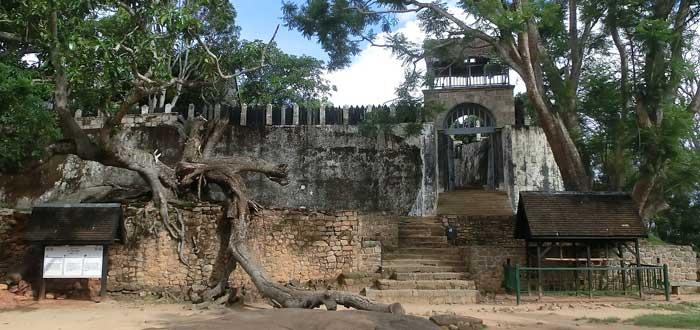 50 Curiosidades de Madagascar, naturaleza única | Con imágenes