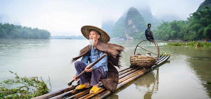 curiosidades de China, pesca con cormorán