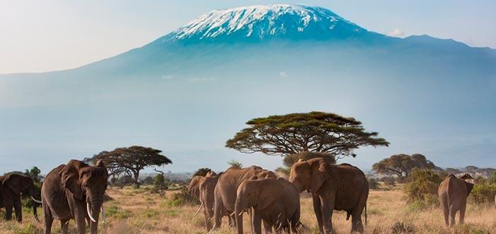 curiosidades de Kenia, Parque Nacional Amboseli