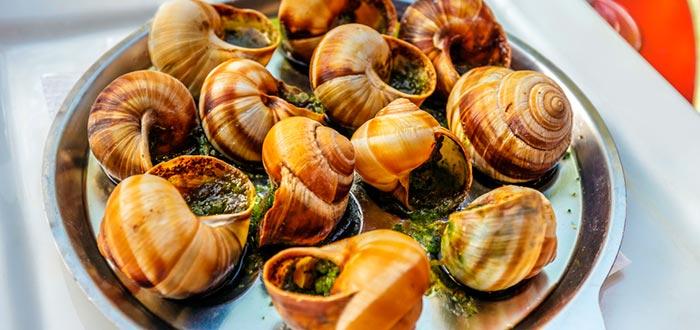 datos curiosos de Francia, escargots