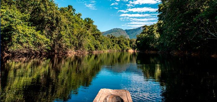 Datos curiosos de Brasil, Selva Amazónica